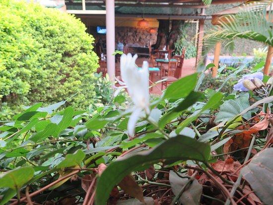 Humura Resorts Photo