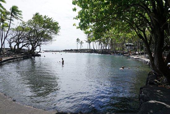 Pahoa, HI: Enjoying the thermal waters!
