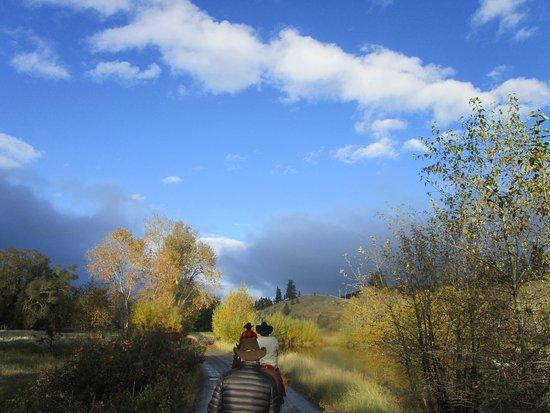 Wolf Creek-billede
