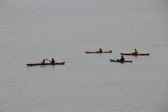 Sturgeon Bay, WI: Kayakers