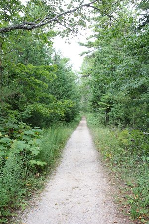 Sturgeon Bay, WI: The path to Old Baldy