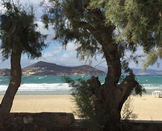 Naxos Resort Beach Hotel: IMG-20161018-WA0004_large.jpg