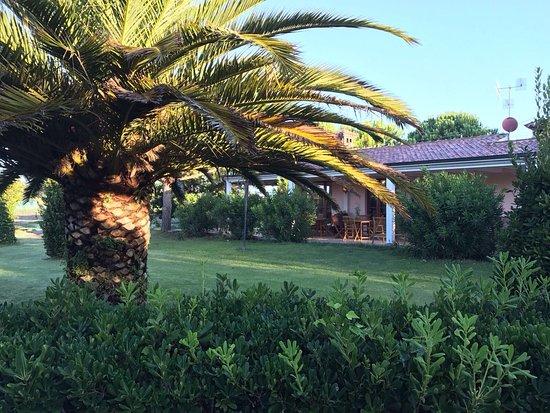 Campiglia Marittima, Włochy: photo3.jpg