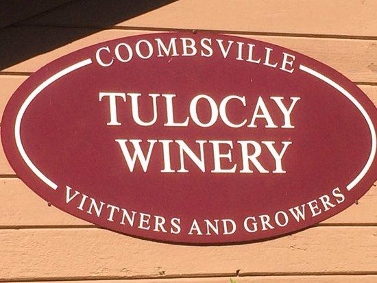 Tulocay Winery