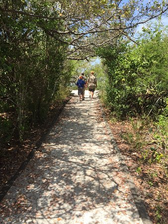Indian Key State Historic Site : Trails with lots of butterflies