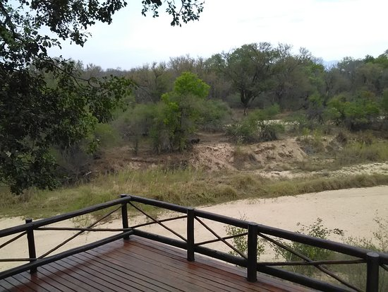 Indlovu River Lodge: View from our terrace across the (dried) river.