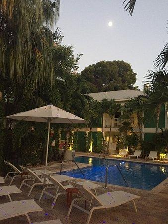 Almond Tree Inn: photo0.jpg