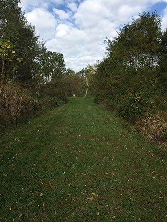 Cedarville, OH: photo3.jpg