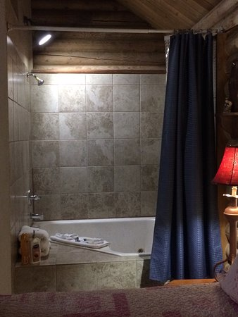 Mt. Charleston Lodge: Shower is inside of the jacuzzi. A step stool (provided in room) may need to be used for this.