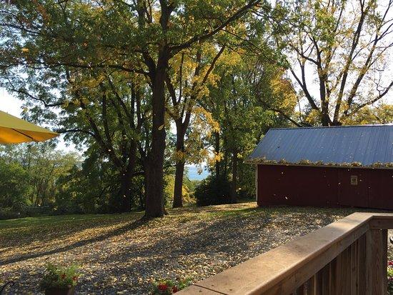 Billsboro Winery: photo1.jpg