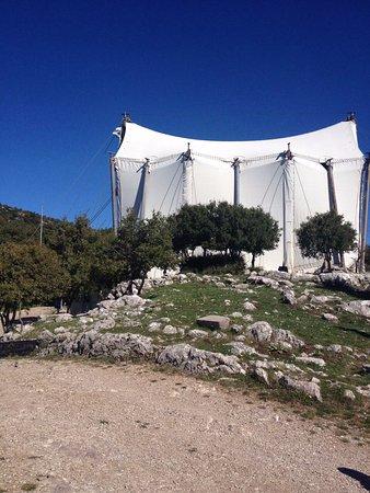 Temple of Apollo Epicurius at Bassae: Ο ΝΑΟΣ ΠΡΟΦΥΛΑΓΜΕΝΟΣ ΑΠΟ ΤΟΥΣ ΑΕΡΗΔΕΣ