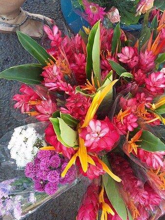 Saint-Paul, Reunion Adası: Fleurs tropicales