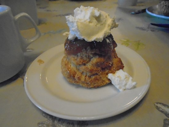 Rathbaun Farm: A scone with jelly and whipped cream