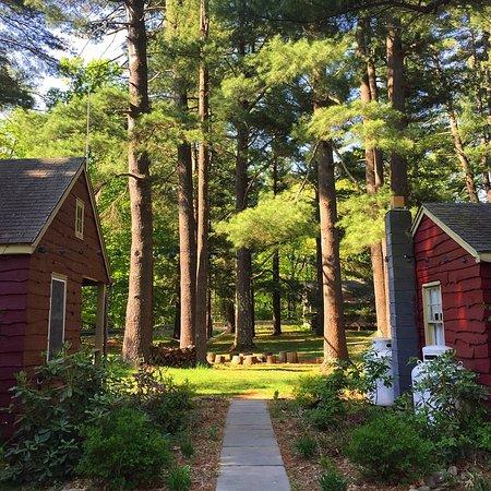 Phoenicia Lodge Photo