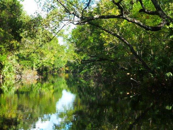 Homosassa Springs, Φλόριντα: Flussfahrt zum Park