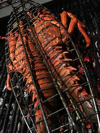 grill chill sea food fresh fish dorado coryphene lobster on order only