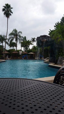 Embassy Suites by Hilton Fort Lauderdale 17th Street : outdoor pool