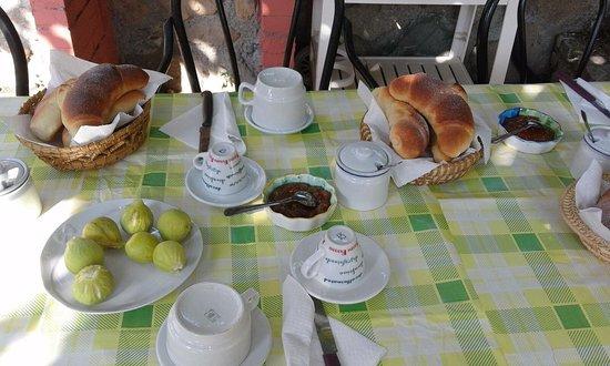 Marina di Fuscaldo, Italy: Colazione a base di marmellate e brioche fatte in casa