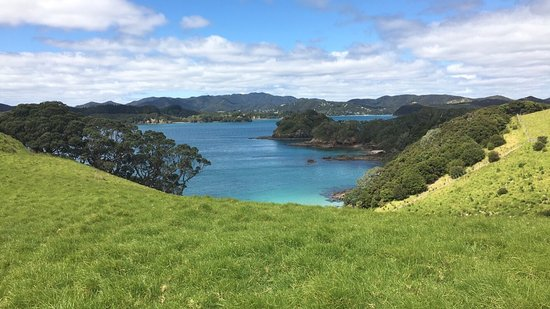 Paihia, Nueva Zelanda: Dolphins, the Hole in the Rock, lunch on Otehei Bay, view from hilltop on Urupukapuka Island loo