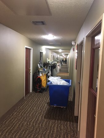 Red Oak, TX: Main Hallway Crowed Like This All Day.