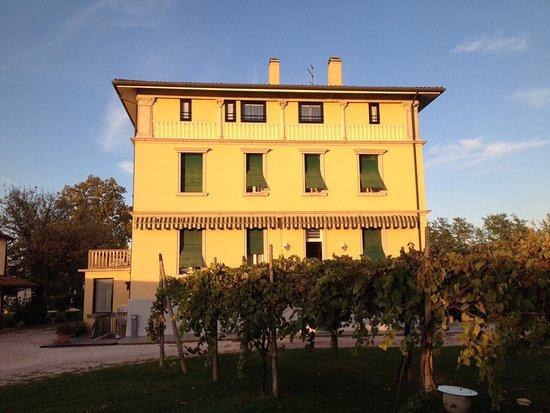Spresiano, Włochy: photo0.jpg