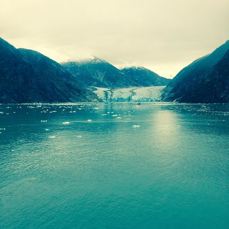 Tracy Arm Fjord: its so peaceful. notice the snow covered mountains