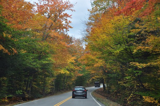 Gorham, NH: beautiful fall color alongside the road