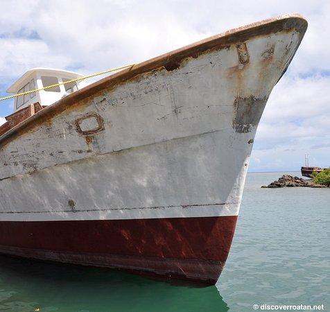 Coxen Hole, Honduras: Commercial Fishing Vessel, Roatan, Honduras