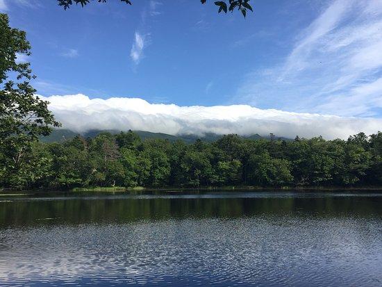 Nonprofit Shiretoko Naturalist's Association : 五湖の一つです。