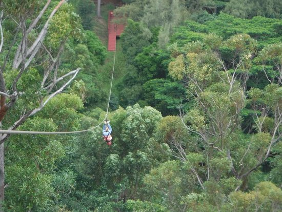 Koloa, Hawaï: Upside down again