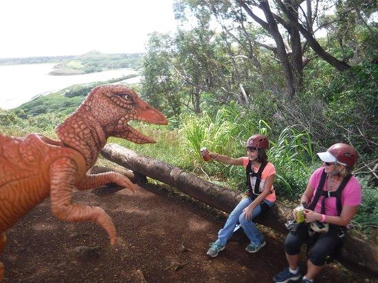 Koloa, Hawaï: Fun pit stop