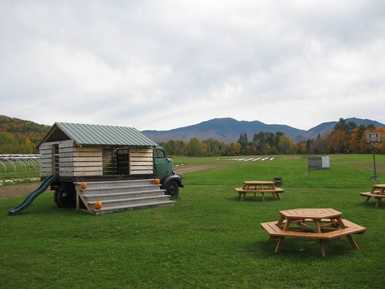 Sugar Hill, NH: Area for picnics and kids play area.