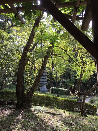 Hiratsuka, ญี่ปุ่น: 公園内、日本庭園