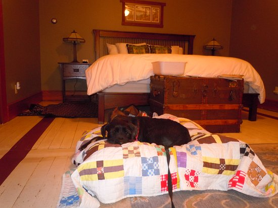 McCloud, CA: Bert's luxury bed (quilt is from home)