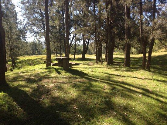 Cedar Creek, Australia: photo4.jpg