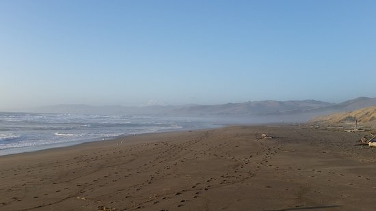 Bodega Dunes Campground: 20161017_175108_large.jpg