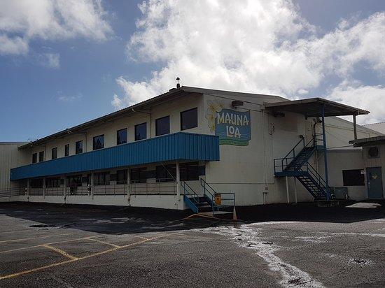 เคียโอ, ฮาวาย: Mauna Loa