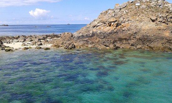 Réserve Naturelle des Sept Îles: eau ,turquoise, c est en Bretagne