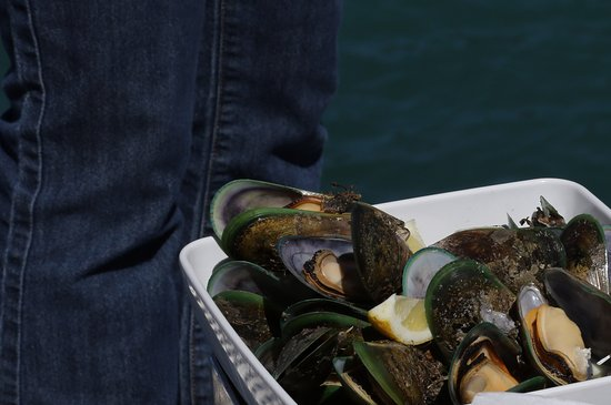 Havelock, Yeni Zelanda: Freshly steamed mussels