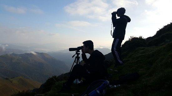 Pola de Laviana, Espanha: Observación de la berrea del ciervo en el Parque de Redes