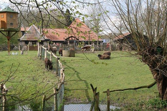 Kinderboerderij Hagerhof