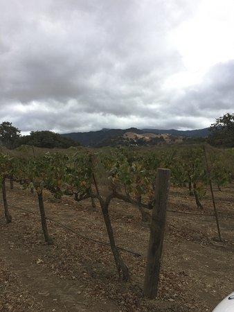 Santa Ynez, Kalifornien: photo5.jpg