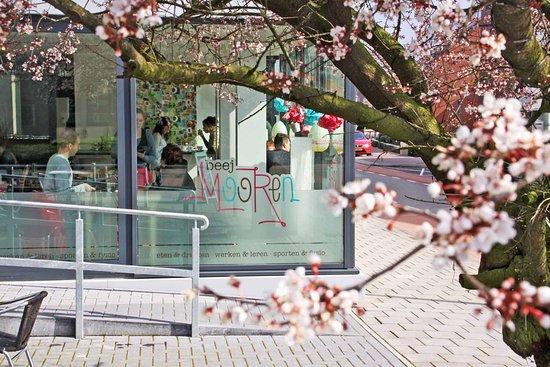 Horst, Nederländerna: mooi