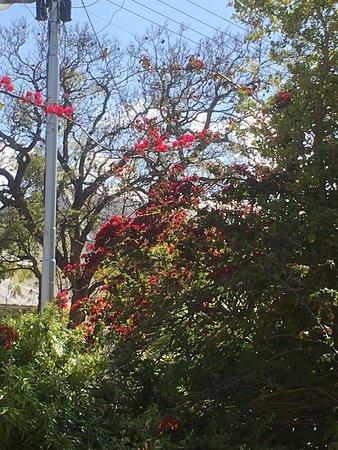 Montagu 4 Seasons : photo1.jpg