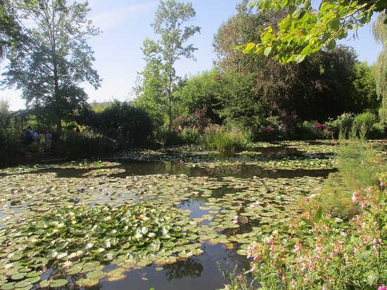Claude Monet's House and Gardens: Monet's Pond