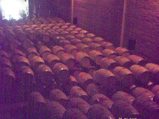 Constantia, South Africa: Wine barrels.