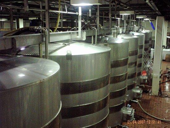 Constantia, Güney Afrika: Fermenting tanks.