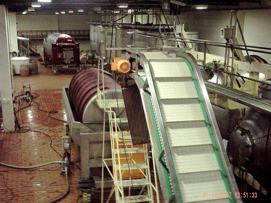 Constantia, South Africa: Process plant.