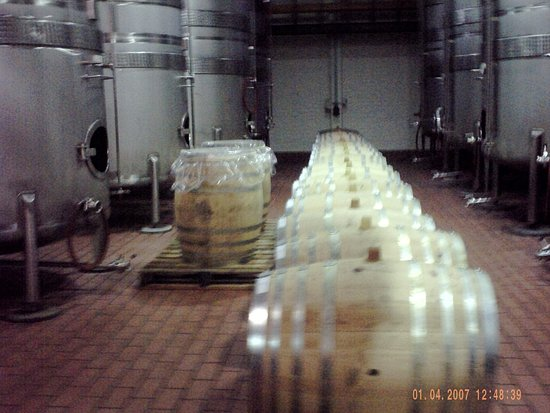 Constantia, South Africa: Barrels and tanks.