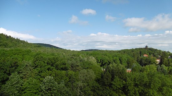 Sopron, Hungria: erdei környezet